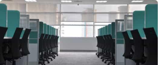 Dératisation de bureaux et commerces
