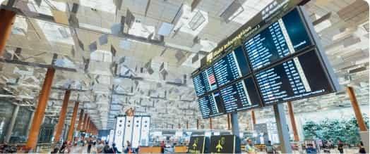 Société de dératisation d'avions et d'aéroports